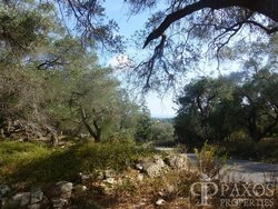 Land with building permit for Sale - Magazia Paxos