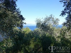 Land with building permit for Sale - Gaios Paxos